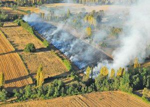 conaf-quemas-agricolas-sobrevuelo-compressor